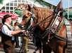 Traditionen und Feste in Bayern