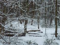 Skigebiet Kohlgruber Hörnle Bayern