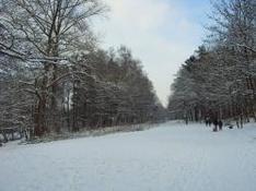 Skigebiet Bolsterlang Hörnergruppe