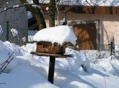 Skigebiet Wendelstein Brannenburg Bayrischzell