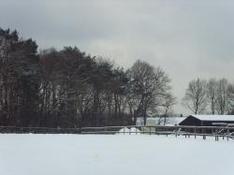 Skigebiet Mitterfirmiansreut Mitterdorf Philippsreut